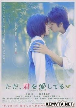 Chỉ Yêu Mình Anh - Tada, Kimi wo Aishiteru