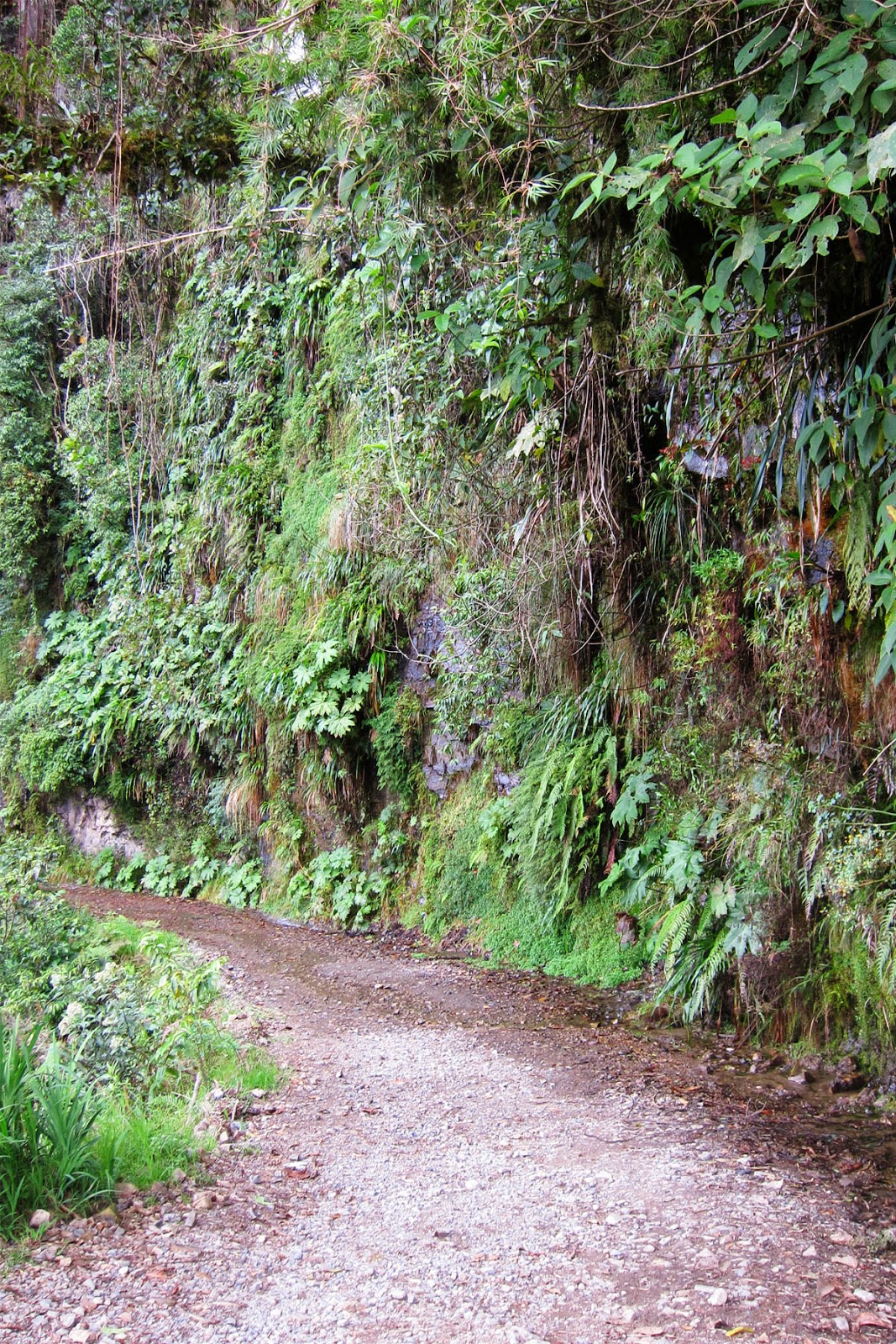 Death Road, Bolivia 2014