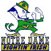 College Football Preview: 13. Notre Dame Fighting Irish