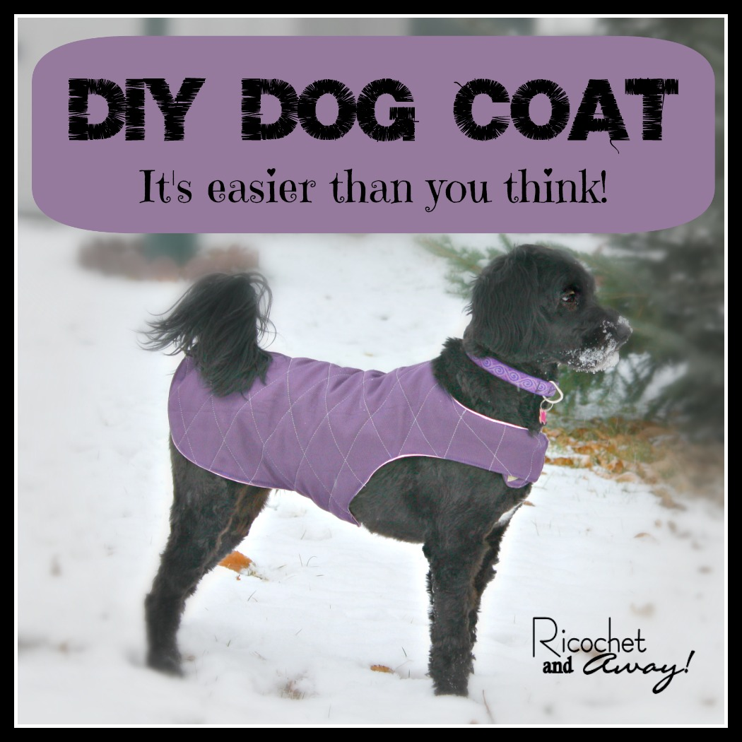 Ricochet and away diy dog coat i made a pinterest board full of dog coat ideas and patterns so if youre in the market for a doggie jacket thats a good place to start jeuxipadfo Image collections