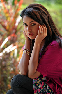 Amala Paul Latest Picture Gallery for Iddarammayilatho Telugu Movie ~ Celebs Next