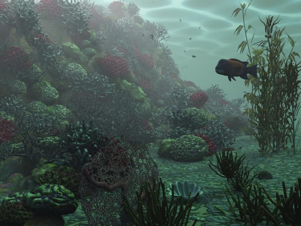 Underwater d Wallpaper Download HD