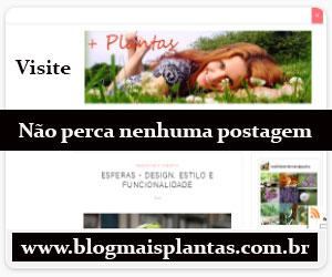 Blog Mais Plantas