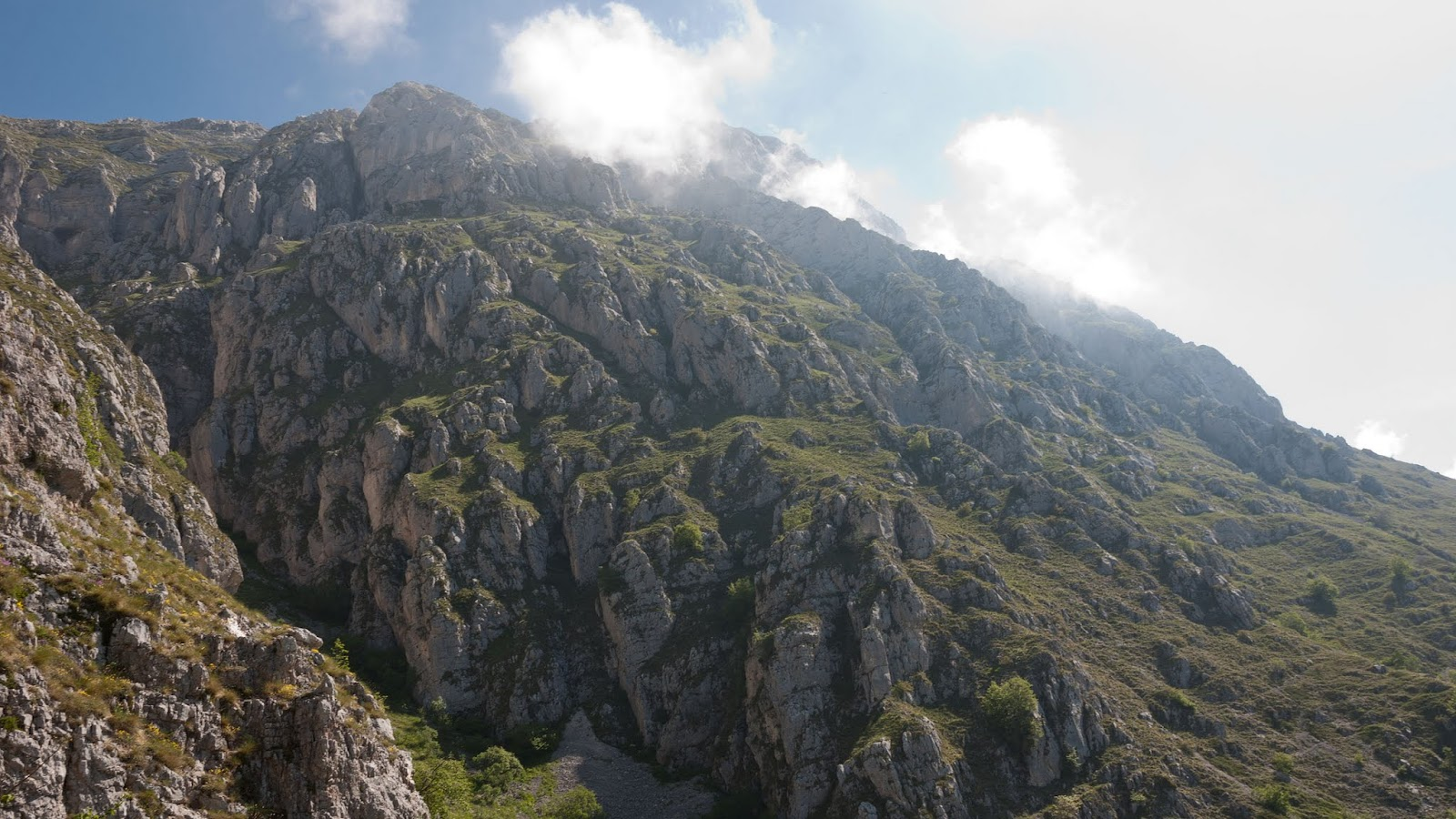 Monte Cafornia