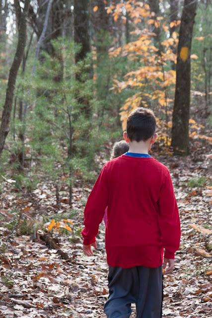 kids walking in the woods