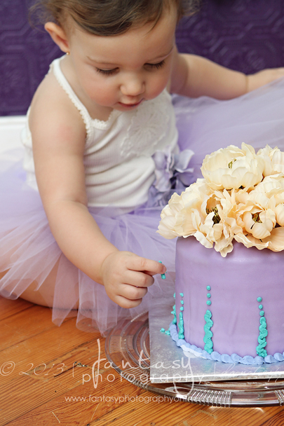 winston salem baby photographers | cake smash photography
