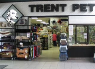 image <br /> Trent Pet Lindsay