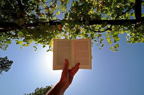 Lectura de fin de semana - lo mejor de la semana dividendo 36-2012