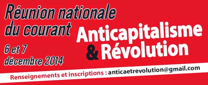 "Courant ""Anticapitalisme et Révolution"" du NPA - Page 3 Image%2Breunion%2Bnationale"
