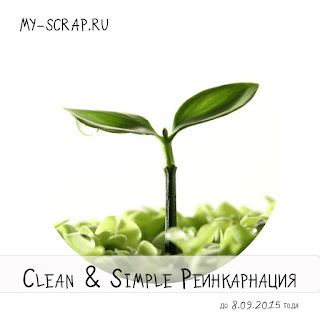 clean & simple реинкарнация