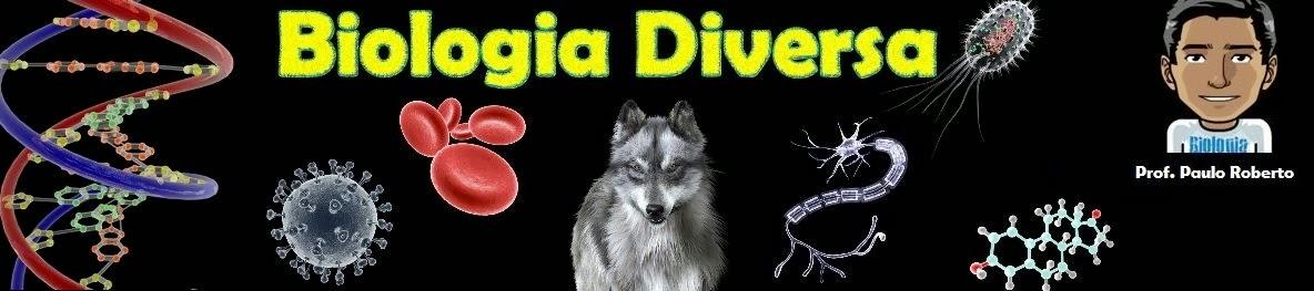 Biologia Diversa | Tudo sobre Biologia, ENEM, Vídeo-Aulas, Exercícios, Simulados e muito mais!