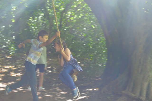 Siblings tree swing