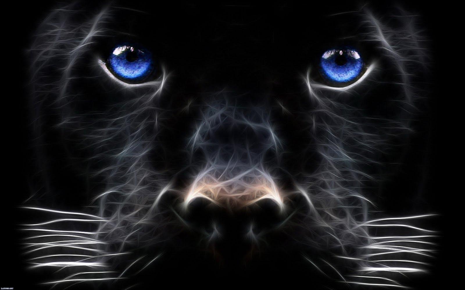 http://1.bp.blogspot.com/-oHzOHor0tHs/TWU1yfXktKI/AAAAAAAASfg/AmCnwg-7HEY/s1600/desktop-wallpapers-dog.jpg