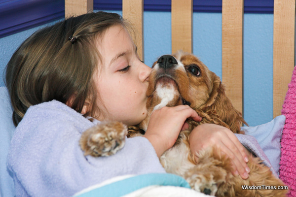 cat, Cats, Children Love Pets, dog, Dogs, pet, pets,