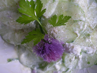 Salade de concombre au chèvre et fleur de ciboulette et ciboulail