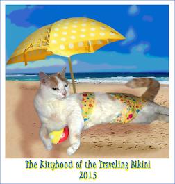 The Kittyhood of the Traveling Bikini