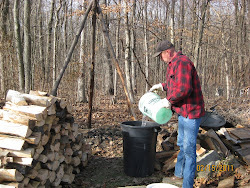 Sap Collection at the Site