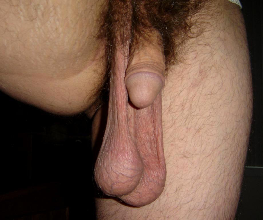 Big low hanging balls and cocks