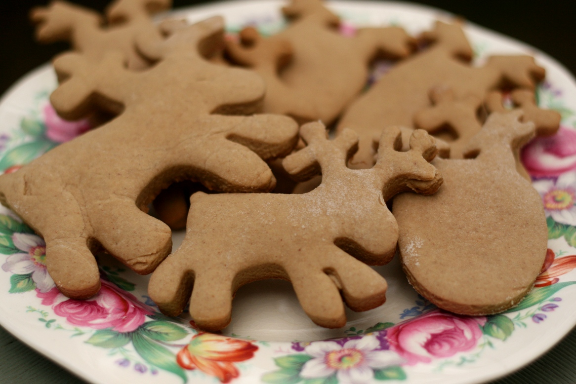 Gingerbread Reindeer Colour My Plate
