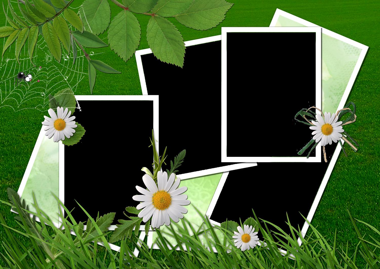 photoshop.png frames wallpapers designs: nature frames