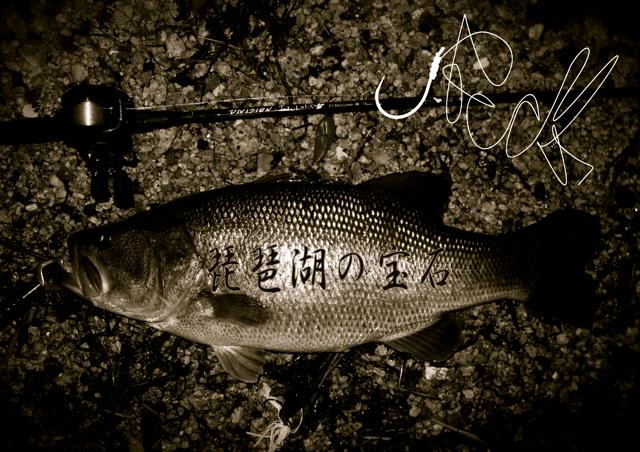 琵琶湖の宝石