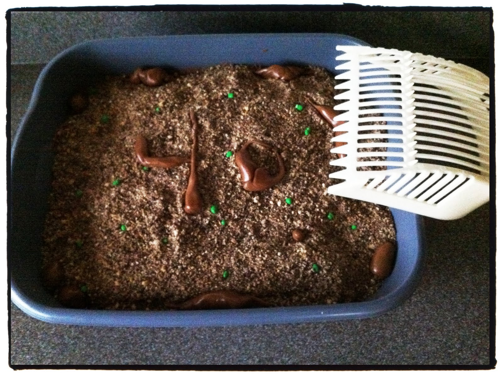 Mo Momma Wordless Wednesday Cat Litter Box Cake - Kitty litter birthday cake
