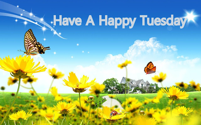 Gentil Happy Tuesday Happy Morning Greetings Wishes Images