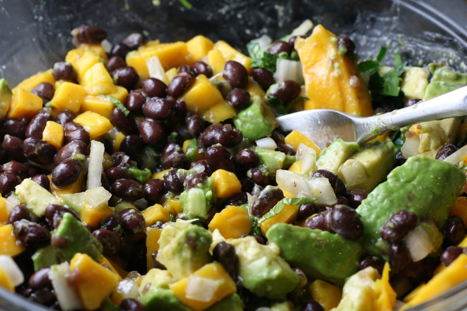 Avocado, Mango and Caribbean Black Bean Tostada
