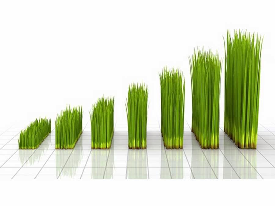 De Nederlandse economie toont weer groei.