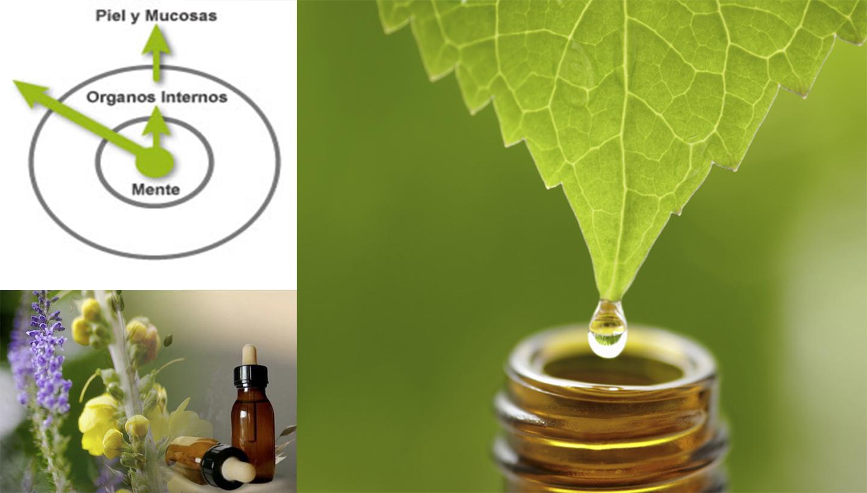 Cita con el Medico Homeopata - Lima Peru