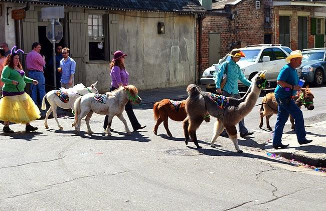 Wanderlusting in New Orleans, Spring 2014