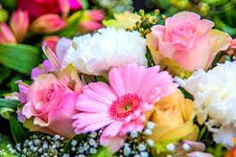 Flores para María
