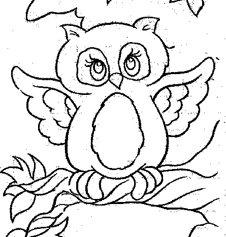 Cute Penguin Coloring Pages Printable