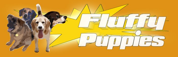 ❤FLUFFY PUPPIES ADVENTURES❤