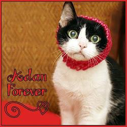 RIP ADAN