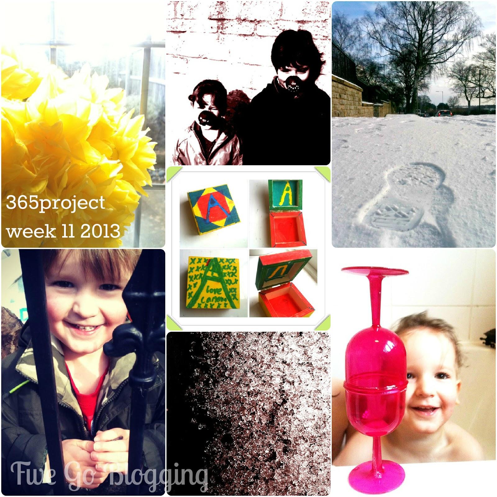 Five Go Blogging 365project week 11 2013