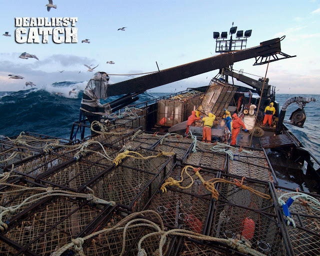 Deadliest Catch is about fishing for crabs in the rough seas off the