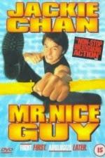Watch Mr. Nice Guy (1997) Megavideo Movie Online