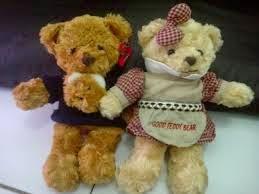 Foto boneka teddy bear berpasangan lucu