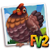 FV2 Partridge Barnevelder Chicken  (baby ,adult,prized)
