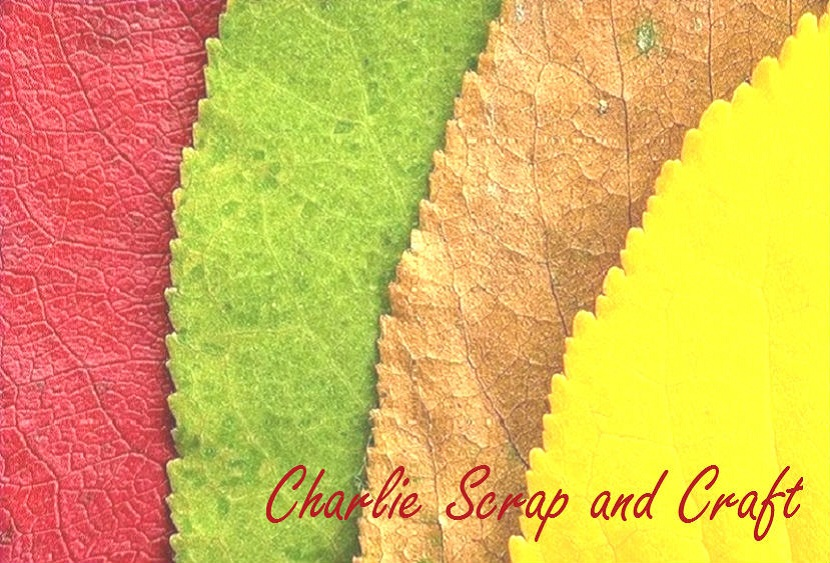 Charlie Scrap and Craft