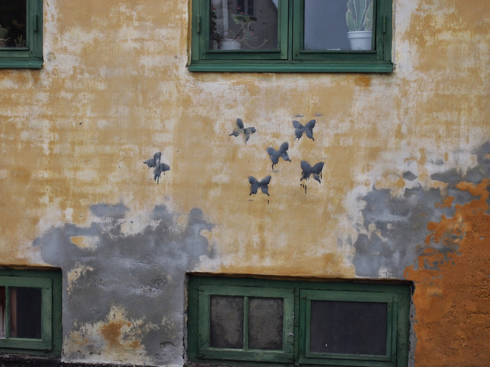 butterfies painted on an old wall in Helsingor