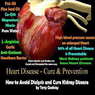 Cure For Arrhythmias Naturally