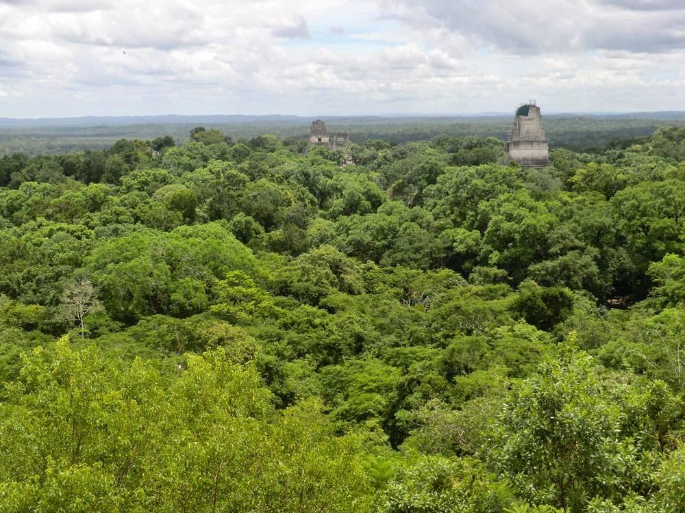 tikal ciudad maya