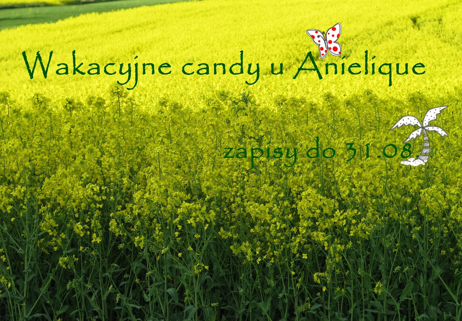 Candy u Anielique :)