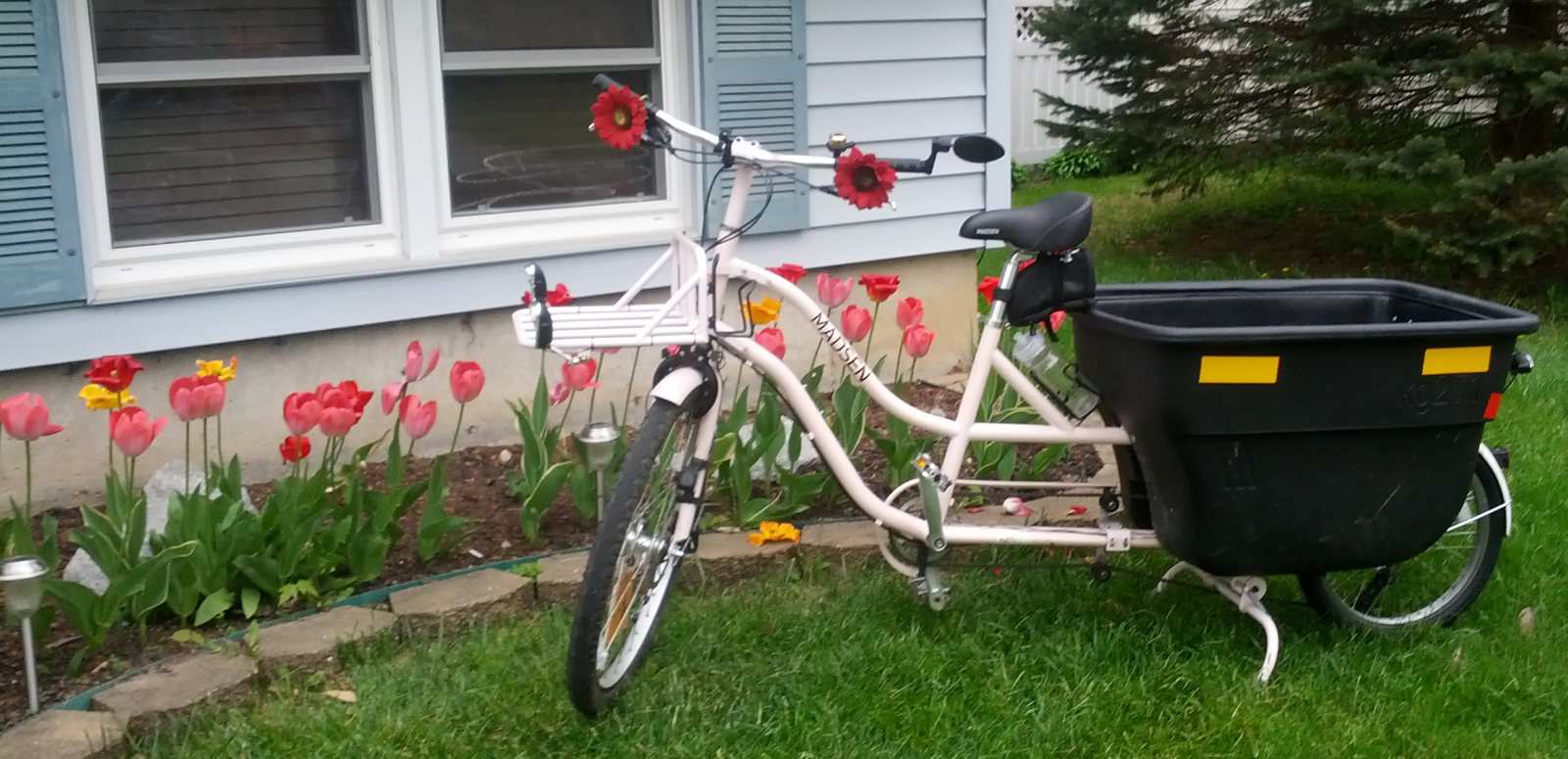 Pink Madsen kg271 bicycle with flowers on handlebars in front of a bed of tulips.