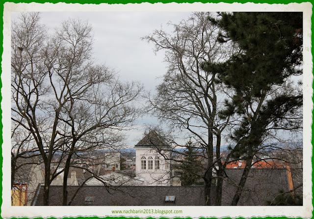 Aussicht Bio Hotel Restaurant Cafe Neuburg An Der Donau