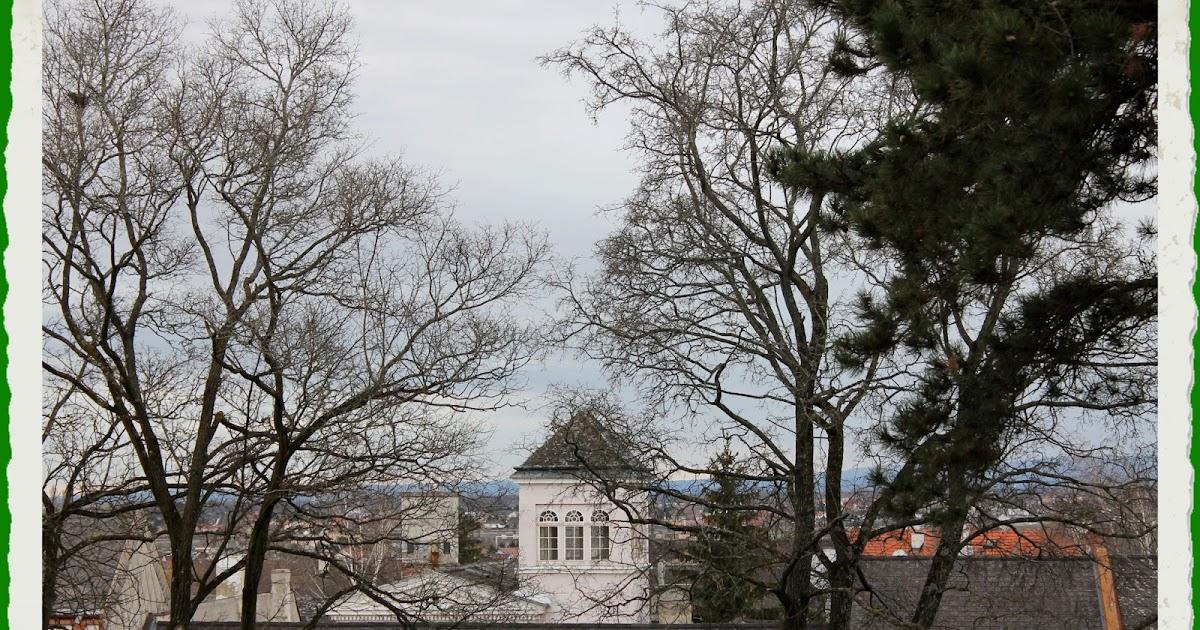 Gutschein Hotel Bad Muskau