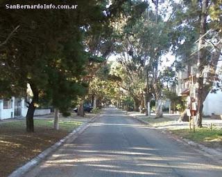 Árboles de la calle Mitre