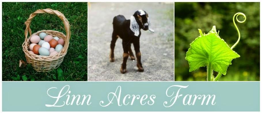 Linn Acres Farm